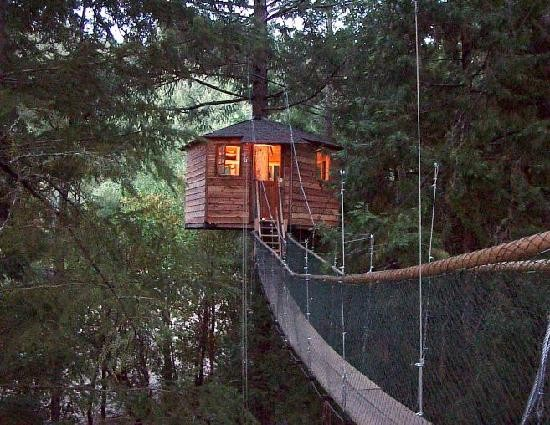 Tree House Resort In Unleash Your Inner Monkey Go Here Treehouse Resorts Here Bend The Source Weekly