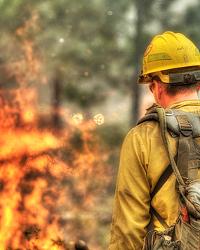 More Fires Follow Last Night's Lightning