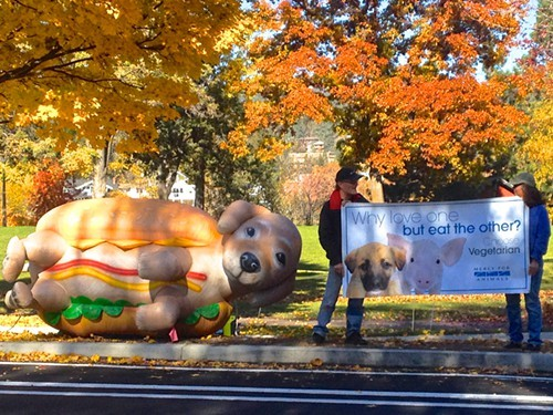 People driving past Drake Park for lunch were greeted by a large inflatable dog and a handful of animal rights activists urging them to fill up on plant-based foods.