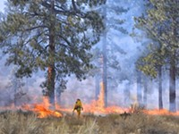 Prescribed Burn near Horse Butte