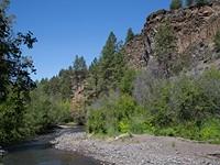 Preserving Aspen Hollow