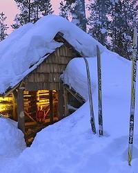Swampi Shelter at dusk
