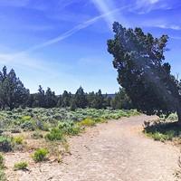 We <3 Trails