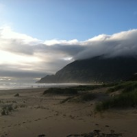 Dreaming of Travel: Manzanita