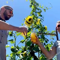 Worthy Brewing's Organic Farm ▶ [with video]