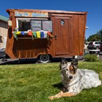 Meet the Shop Dog: Ronix