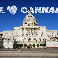 Washington Loves Weed!