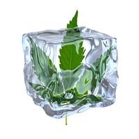 ICE Ices Cannabis