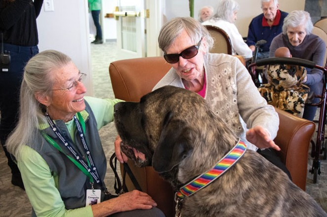 Jennifer Horsman and her therapy dog, Hobie, greet Aspen Ridge Memory Care resident Joan Wray on Friday, march1, 2019. - KEELY DAMARA