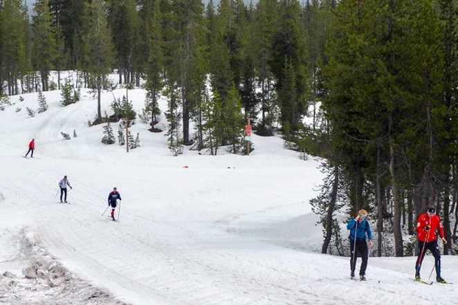 Members of the U.S. Cross Country Ski Team at Mt. Bachelor Nordic Center. - CHRIS MILLER