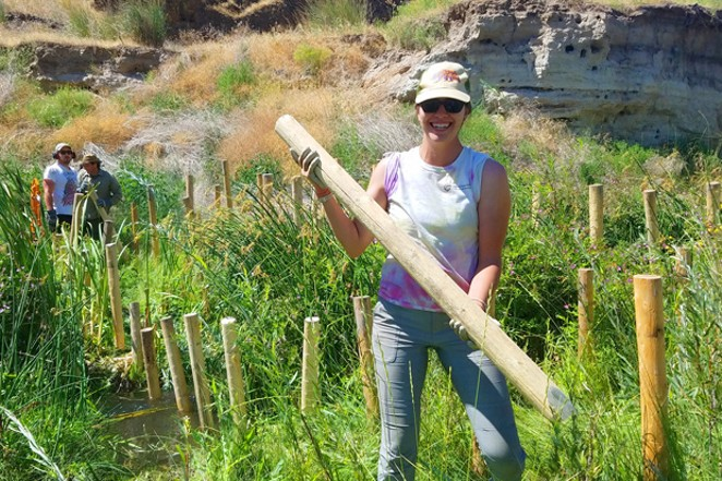Alison Luce is one of several ONDA volunteers creating habitat to bring the beaver back to eastern Oregon. - ONDA PHOTO BY BRIDGET TINSLEY