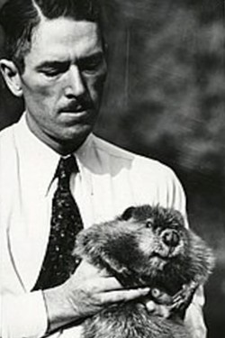 Ted Howell, 1937 U.S. Bureau of Fisheries, holds an adult beaver. - OREGON HISTORICAL SOCIETY