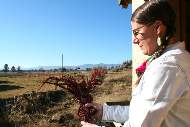 Olson holds a bunch of Hopi amaranth, which originates with the Hopi tribes of the American Southwest. Known for its deep red color, the plant is used for dye as well as microgreens. Olson saves its tiny seed for her native seed stash. - NICOLE VULCAN