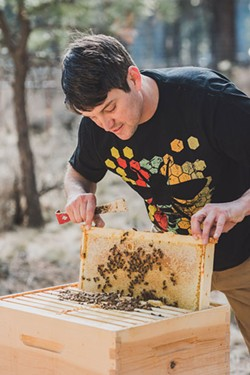 Jimmy Wilkie, owner of Broadus Bees, lifts a frame out of its box to inspect his bees. - AMANDA PHOTOGRAPHIC