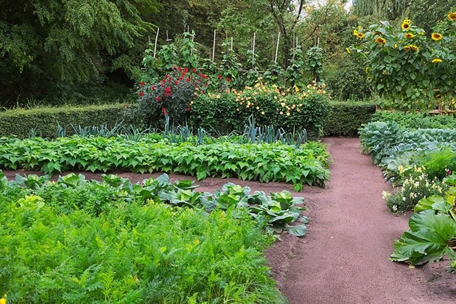 What Can I Plant in a Victory Garden How to Plant a Victory Garden Victory Gardening Square Foot Gardening square foot gardening square foot gardening spacing chart square foot gardening planner square foot gardening spacing square foot gardening soil all new square foot gardening square foot gardening chart square foot gardening tomatoes square foot gardening planting guide square foot gardening book square foot gardening corn square foot gardening plant spacing square foot gardening layout square foot gardening planting chart square foot gardening gardeners.com tomato plant spacing square foot garden planner 9 squared squarefoot square in to square ft square foot garden plant spacing calculator how does square work square foot gardening spacing chart square foot gardening planner one plant mel's mix cucumber plant spacing square foot gardening spacing tomato spacing when to plant vegetables chart square foot gardening soil 4x8 raised bed vegetable garden layout the all inch plant cucumber spacing what is the square footage of 12 blocks that are 2ft x 2ft how far apart to plant peppers how far apart to plant cucumbers how far apart to plant corn zucchini plant spacing garden square planted feet how many tomatoes per plant all new square foot gardening spacing for tomatoes cauliflower spacing how many pumpkins per plant square foot gardening chart how to square a foundation define garden how many bell peppers per plant all plants planting means how many cucumbers per plant why do you want to work at square summer of 4 ft. 2 raised bed gardening layouts square foot gardening tomatoes one square foot what do plants mean planting.plants garlic spacing in squared to ft squared herb garden layout best vegetables to grow in raised beds how many cantaloupe per plant plant spacing mel bartholomew raised bed vegetable garden layout vegetable planting guide sfg' broccoli plant spacing plant spacing chart spacing tomato plants 1 square broccoli spacing herb garden planner spac