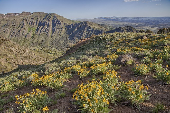 Steens Mountain in eastern Oregon. Less-populated regions of the state may open early. - BUREAU OF LAND MANAGEMENT