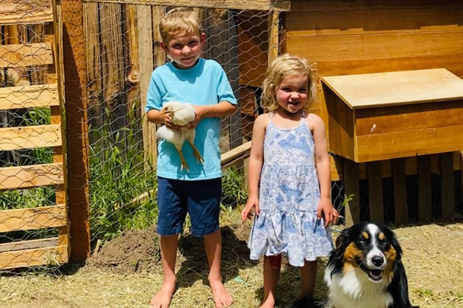 Christy Tanner bought chicks during Easter in order to be prepared if the family needs a protein source. She says the chickens bring a lot of joy to her three young children and mini Australian Shepard. - CHRISTY TANNER