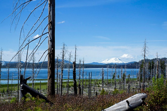 Davis Lake, with its lava shores and mountain views, offers a respite from summer crowds. - BONNIE MORELAND / FLICKR