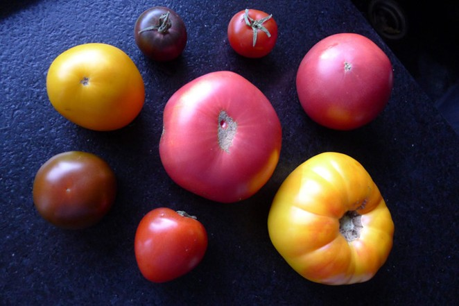 These seasonal flavor bombs come in all sizes and colors. - JAMIE DRYSDALE, BLUE COYOTE FARM
