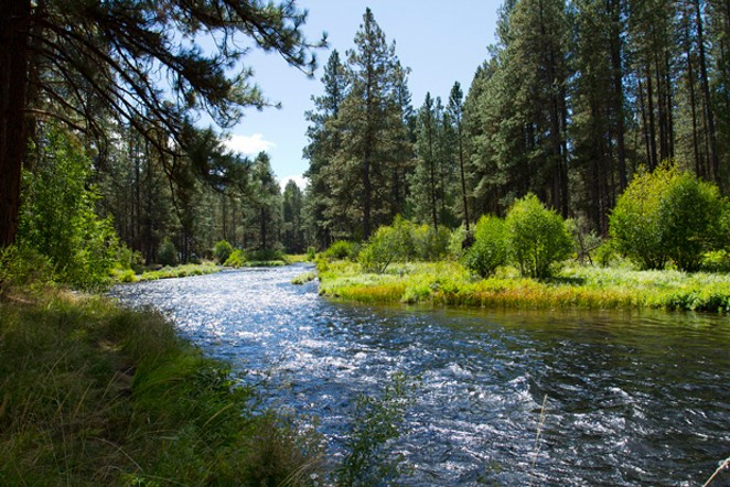 The West Bank Metolius Trail winds past gushing aquamarine waters and grassy banks perfect for a picnic or to just dangle your feet in the refreshing stream. - FLICKR – BONNIE MORELAND