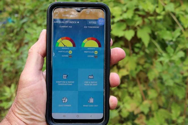 Entering data into the Smoke Sense app. - DAMIAN FAGAN