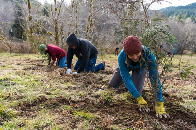 Project Appleseed volunteers have planted more than 135,00 trees as part of the project thus far. - GRANT TANDY