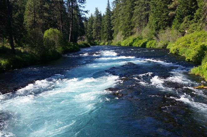 Wizard Falls along the Metolius River. - DAMIAN FAGAN