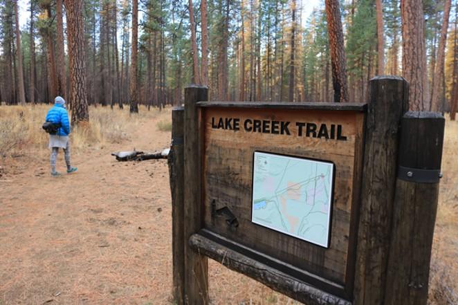 A hiker enjoys the changing season along the Lake Creek trail. - DAMIAN FAGAN