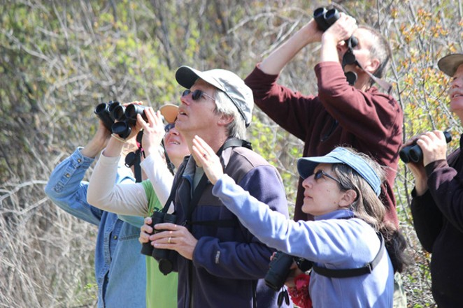 """Sneaking up on birds started out as """"bird watching,"""" but today these folks are """"birding."""" - CHUCK GATES"""