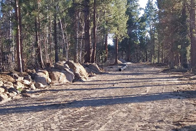 Paths cleared through the forest is one of the homeowner group's biggest complaints with Tumalo Irrigation Ditrict's pipeline. - PATRON GROUP IN TUMALO LAWSUIT