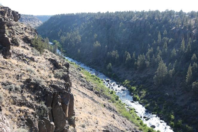 A view into the Deschutes River Canyon near Wildcat Canyon. - DAMIAN FAGAN