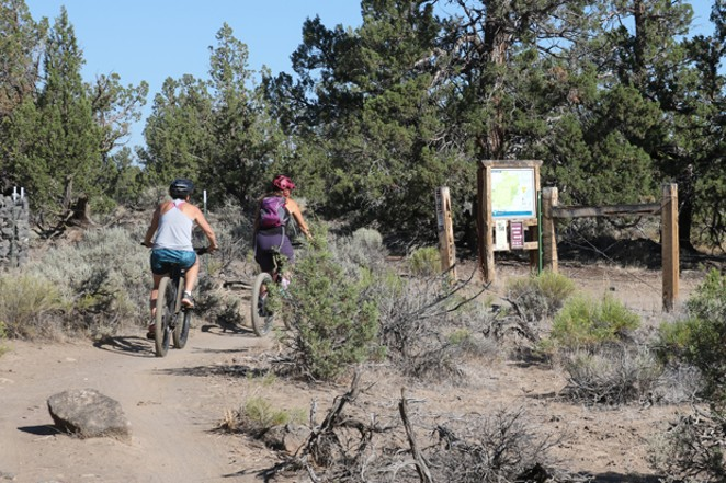 Bike riders head out onto the Maston trail system. - DAMIAN FAGAN