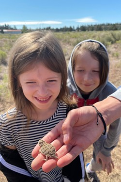 Jane and Graham Anderson looking over a Pygmy horned lizard. - CALEB ANDERSON