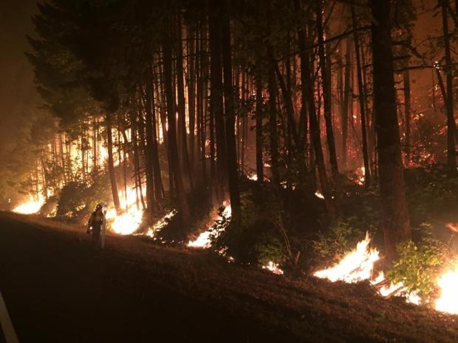 A firefighter examines the night back burn off of I-84 west of Cascade Locks. - INCIWEB.NWCG.GOV
