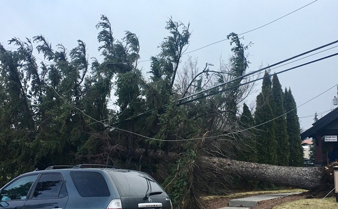 A downed tree on the corner of Fourth Street and Norton Avenue has caused headaches for nearby businesses like Pho Viet Restaurant and local residents. - CITY OF BEND FIRE DEPARTMENT