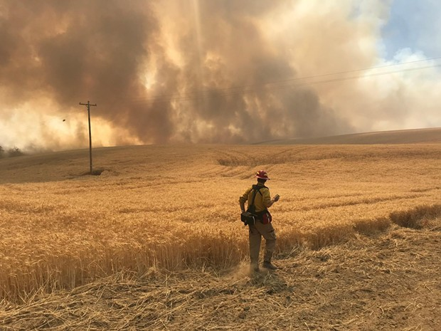A wildland firefighter assesses the fire line on the Substation Fire. - NWCC.GOV