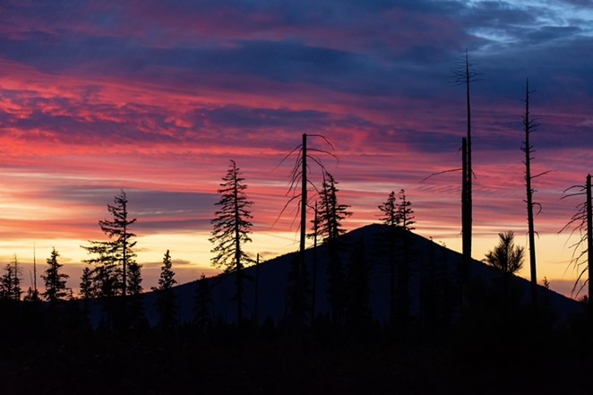 pink_sky_over_mountain_and_trees_sm.jpg