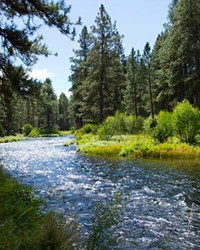 The West Bank Metolius Trail winds past gushing aquamarine waters and grassy banks perfect for a picnic or to just dangle your feet in the refreshing stream.