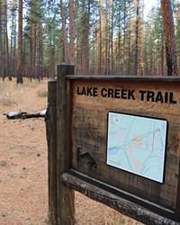 A hiker enjoys the changing season along the Lake Creek trail.