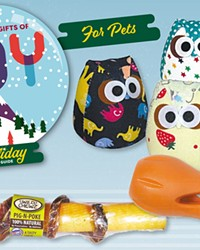 2020 Gift Guide: Joy for Pets