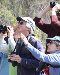 """Sneaking up on birds started out as """"bird watching,"""" but today these folks are """"birding."""""""