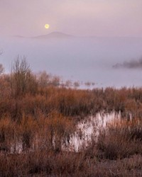 A super shot of the April Super Moon! Thanks for sharing this foggy Oregon scene with us @tonitstop. Tag @sourceweekly in your photos while you are out and about for your chance to be featured here and in the Cascades Reader.