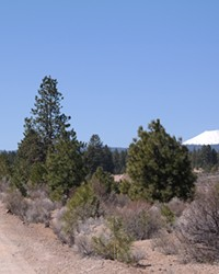 The Outback Trail connects Shevlin and Discovery Parks in west Bend, and is the newest trail from Bend Parks and Rec.