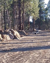 Paths cleared through the forest is one of the homeowner group's biggest complaints with Tumalo Irrigation Ditrict's pipeline.