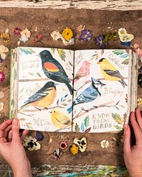 """Readers can find inspiration on every page of Katie Daisy's book, """"How to be a Wildflower."""""""