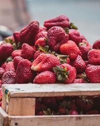 Nutrition Tip of the Week: Antioxidants