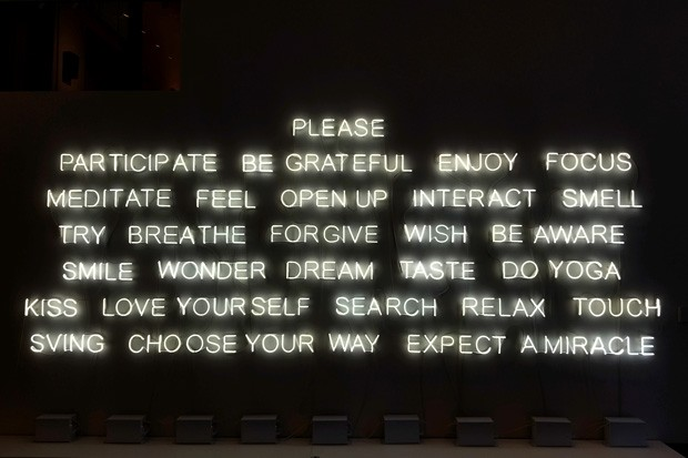 Please Participate. 2015. By Jeppe Hein - CARI BROWN