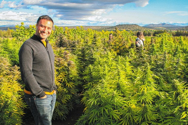 Jason Baynes, whose hemp crop is part of Desert Green's collaborative, stands in front of the hemp field at Rainshadow Organics. duce Sept. 20. - NICOLE VULCAN