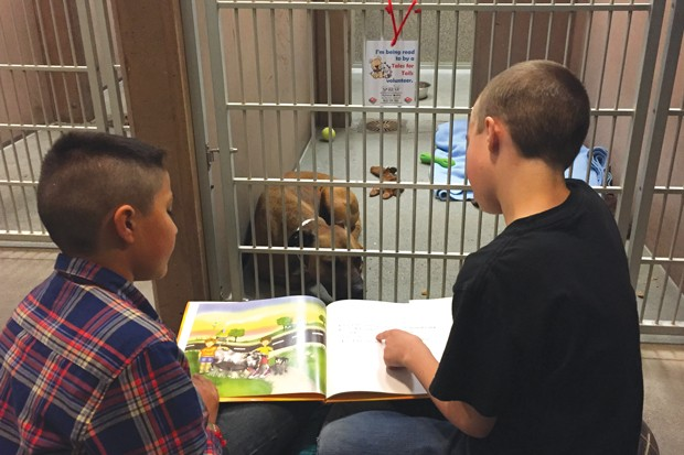 Kids practice reading skills while connecting with furry friends through the Humane Society's Tales for Tails Program. - PHOTO COURTESY OF THE HUMANE SOCIETY OF CENTRAL OREGON