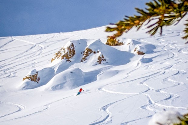 Aaron Hartz making some enviable lines in the snow—likely while also thinking about glacier recession. - GRAHAM ZIMMERMAN